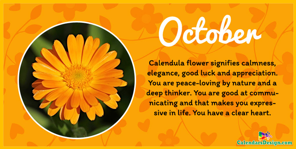 Flower For October Month Quotes