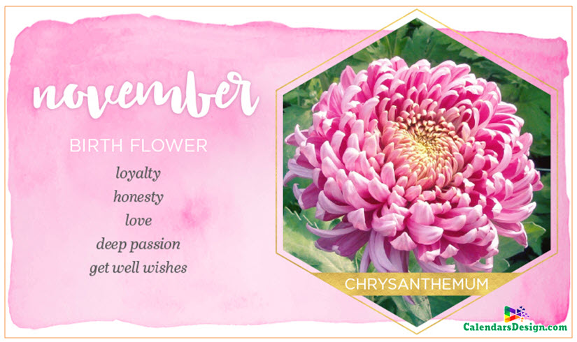 Flower for November Month Quotes