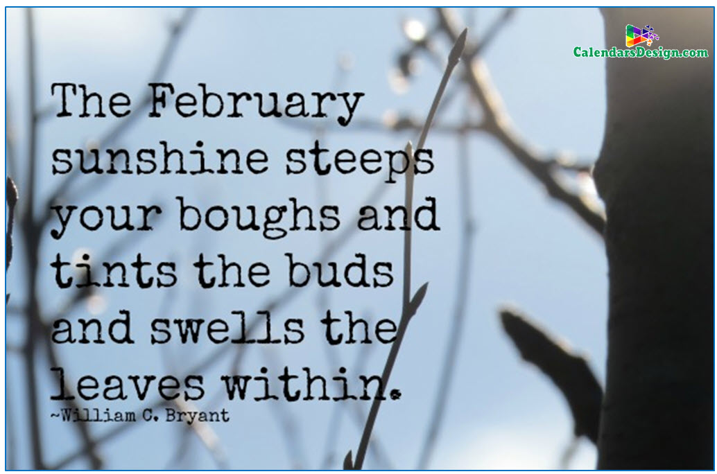 Welcome February Month Quotes and Sayings