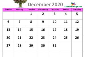 Cute Calendar for December 2020